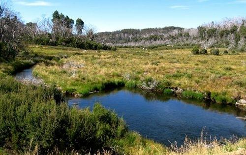 ogilvies-creek