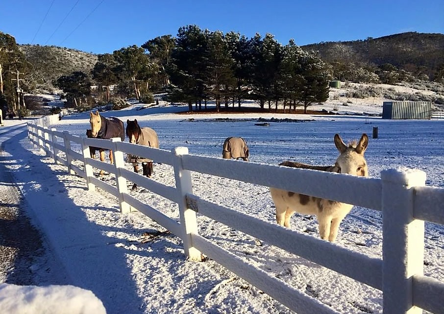 snowy_river_cabins_4