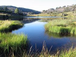 Sponar's Lake
