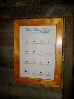 Flybox display