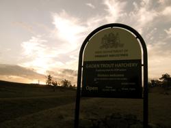 Gaden Trout Hatchery