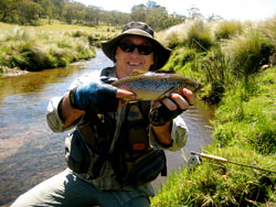Moonbah Hut Brown Trout